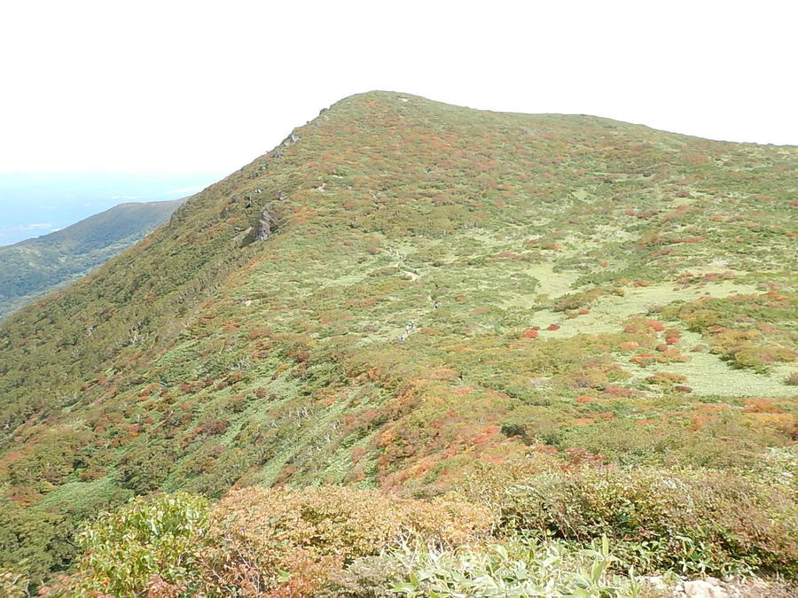 Mt. Sanbonyaridake
