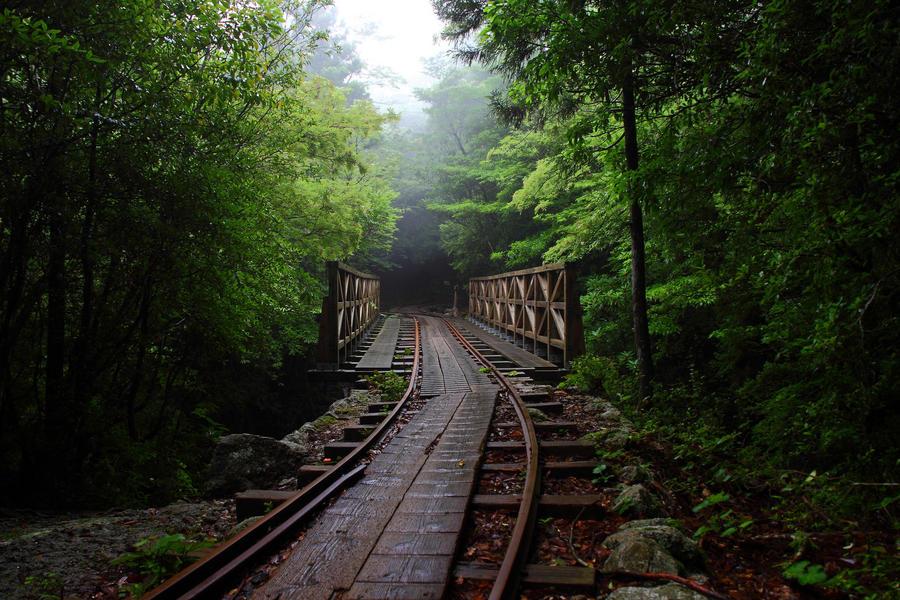 Rail car track