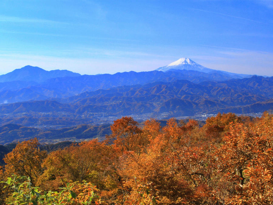 Mt. Fuji viewed from Mt. Jinba in fall. The foliage reaches its peak in November.