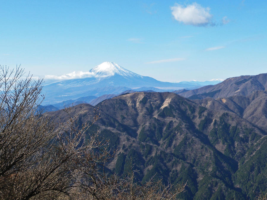 On clear days, you can see the Tanzawa mountain ridges and Mt. Fuji beautifully from the summit of Mt. Oyama.