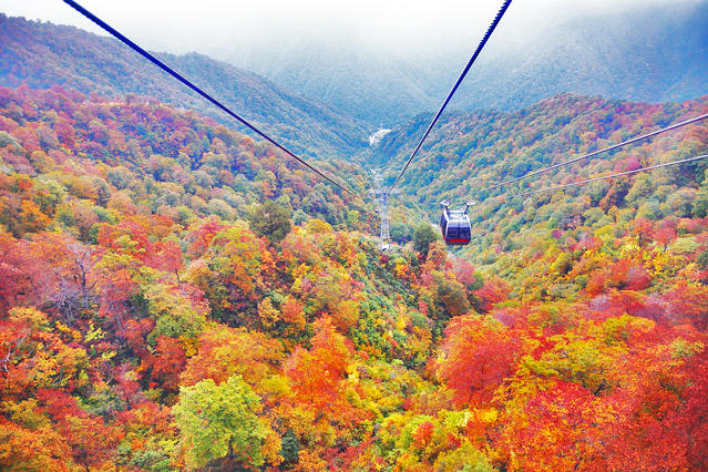 The ropeway ride takes about 10 minutes.