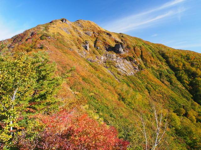 Vibrant autumn foliage on Mt. Shirogamon.