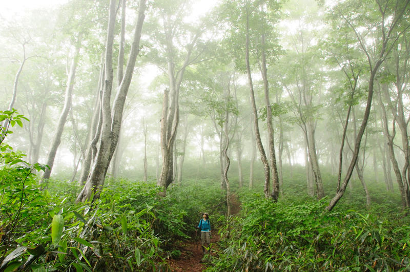 Mt. Amamizu ( Photo by NPO Shin-etsu Trail Club )